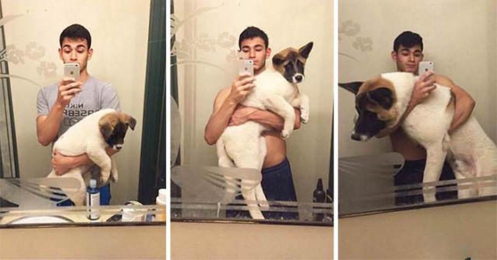 Щеночки выросли, но им об этом никто не сказал: подборка фото выносливых хозяев и их почти неподъемных (в прямом смысле этого слова) собак