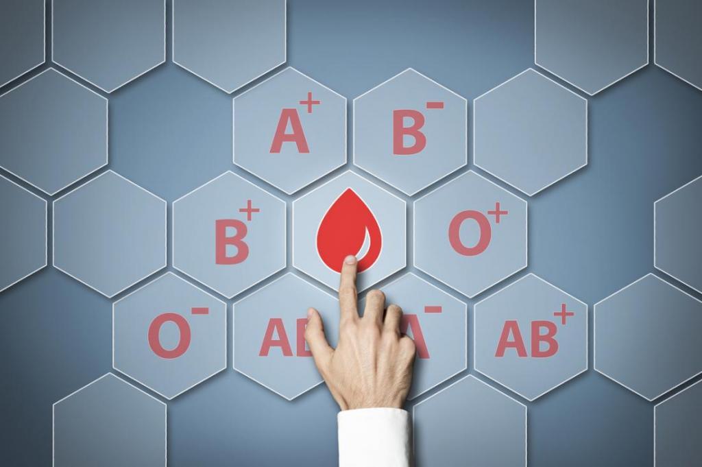 Как группа крови может повлиять на здоровье и физическую форму