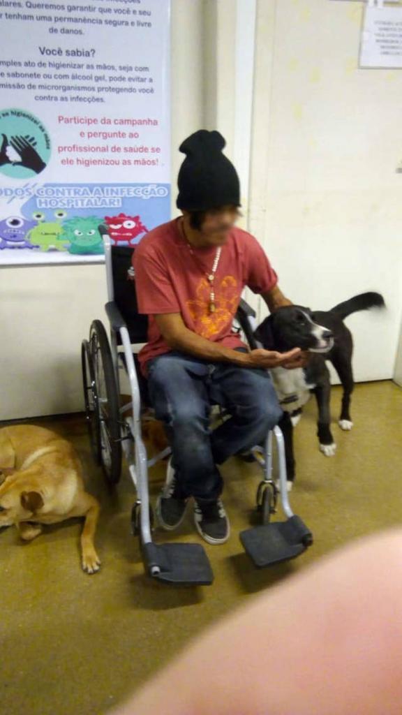 И все равно не одинок: бездомного, помещенного в больницу, навещали только... собаки