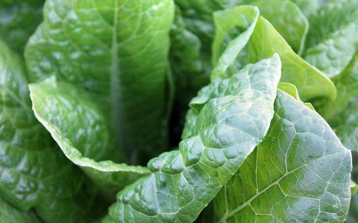 Брокколи, клюква, имбирь: продукты, которые помогут очистить организм от никотина
