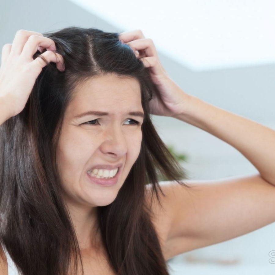 Перхоть, аллергия на краску, дерматит. Чем еще может быть вызван постоянный зуд головы и как от него избавиться