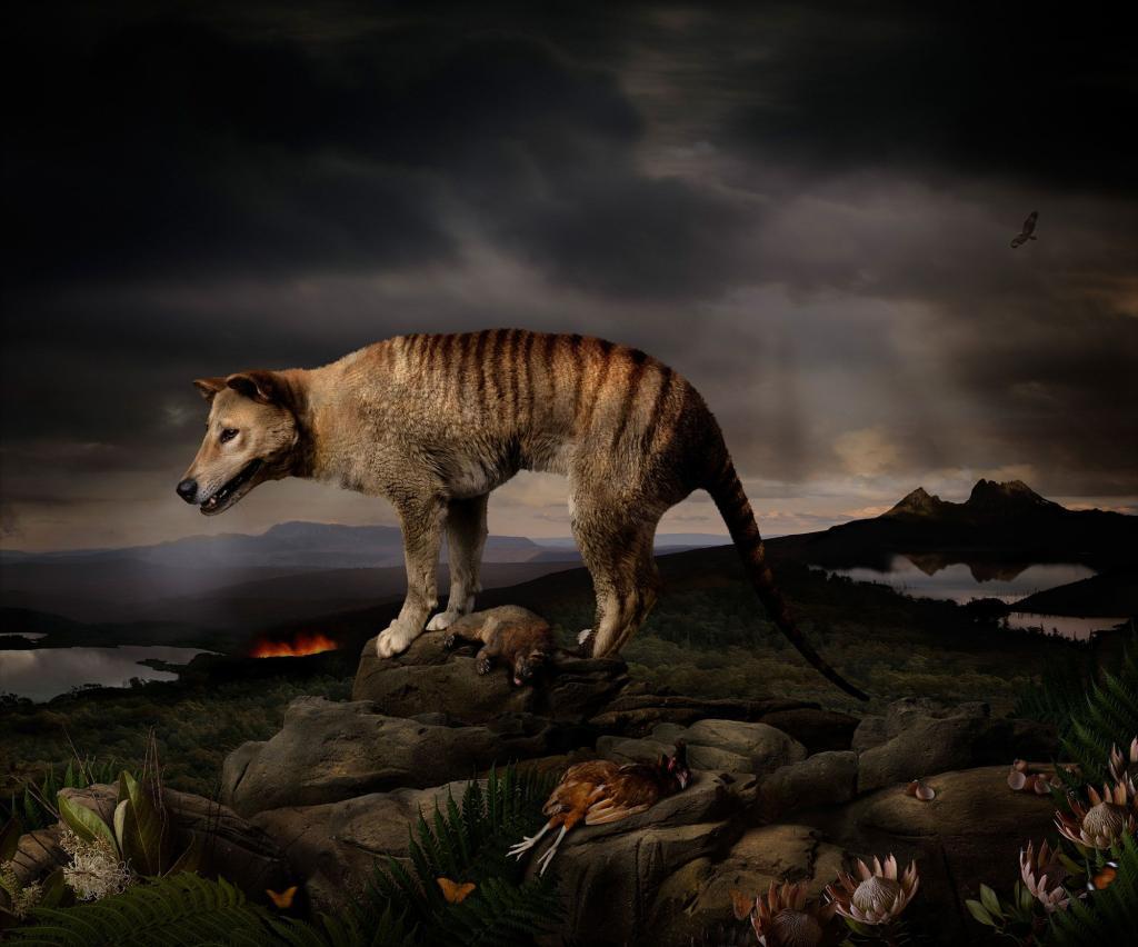 третьяков вроде вымершие животные с картинками шаляпин, внутренней