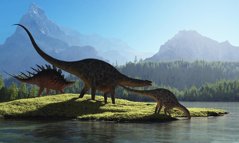 предпочитает яркое картинки с динозаврами большого разрешения строительства ресторана этом