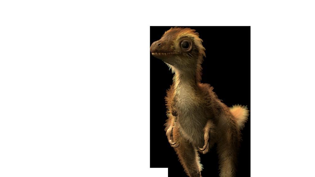 Как на самом деле выглядели динозавры: последние открытия