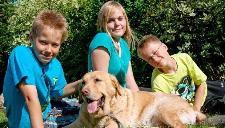 Семья потеряла любимую собаку, но спустя год пропажа неожиданно нашлась