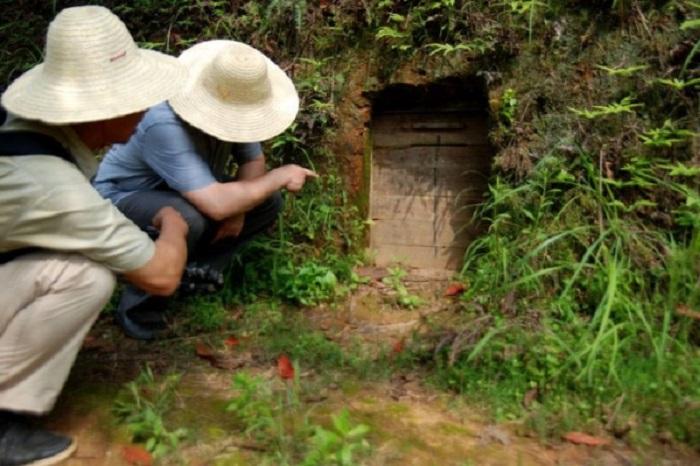 Фермер нашел потайную комнату в погребе, в которой хранились сокровища XII века