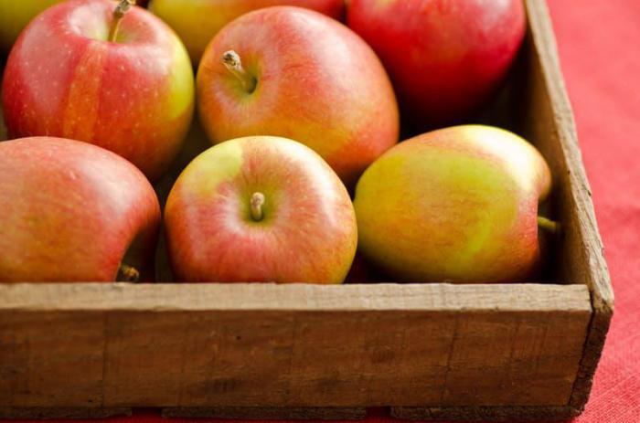 яблоко для выпечки