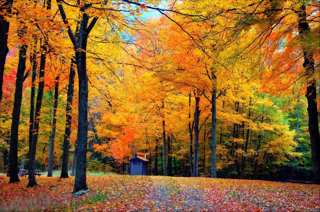 Лучшие места в мире для наслаждения красками осени