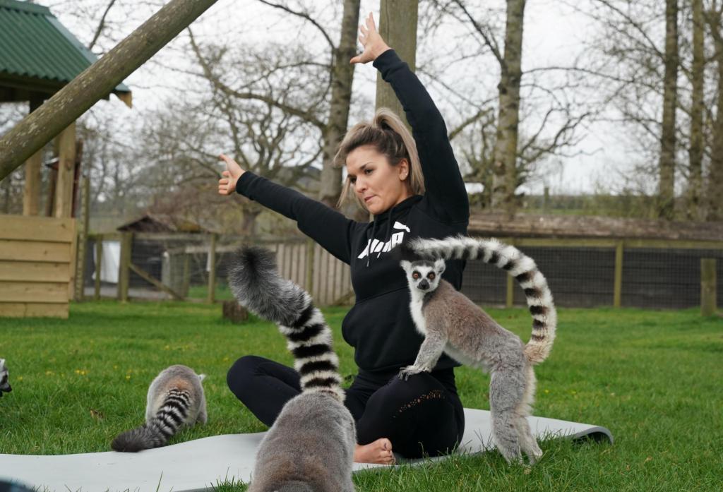 Асаны с лемурами: в Британии набирает популярность новый вид йоги