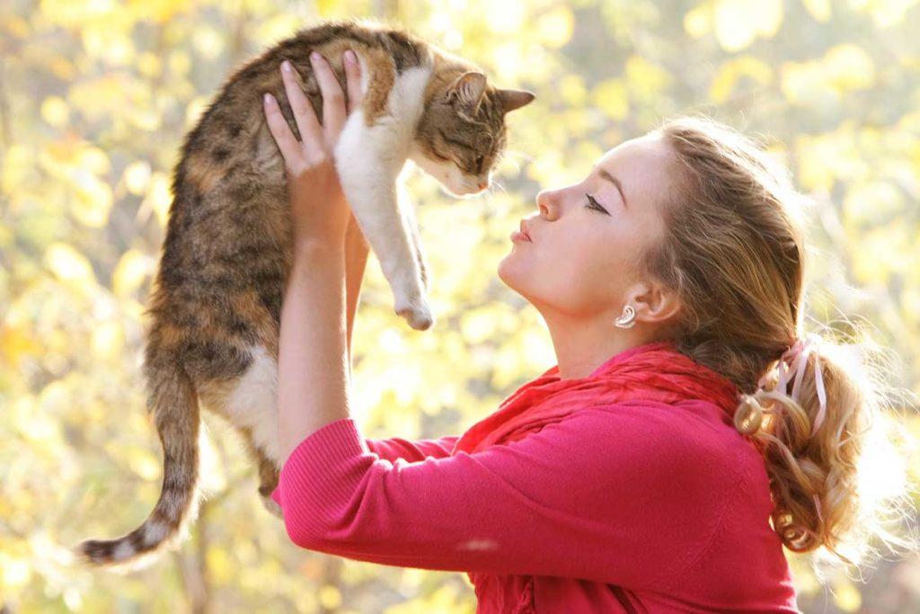 кошка с хозяином картинки уточняют, что