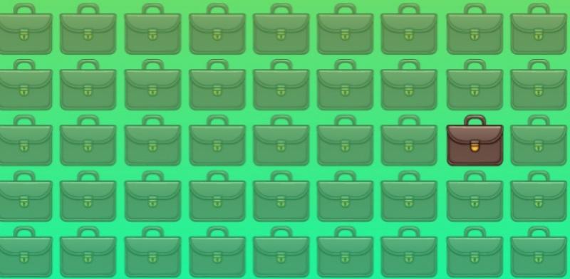 Тест на внимательность: один из портфелей отличается от прочих. Какой именно?