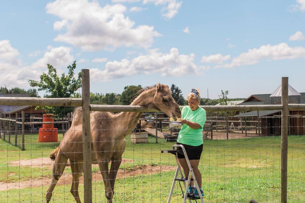 Верблюд по имени Джефри: мужчина из Мичигана привел на взвешивание в ветеринарный магазин собственного верблюда (фото)