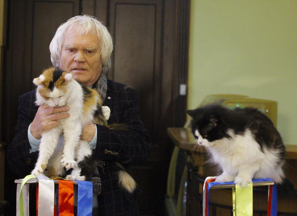 О жизни и кошках Юрия Куклачева. К юбилею артиста цирка