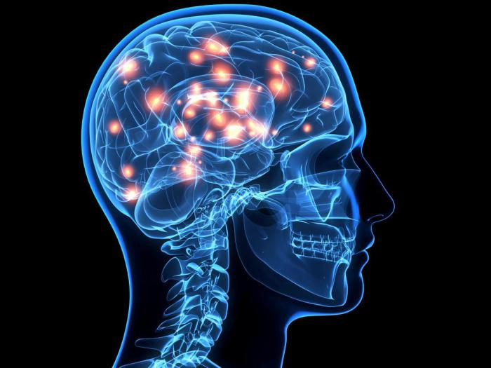 Сила ума: 5 способов стать умнее
