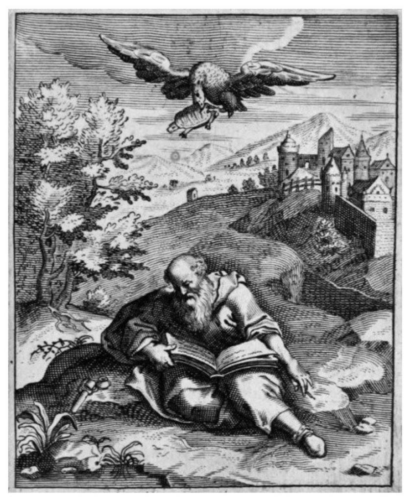 Споткнулся о собственную бороду, утонул в вине, упала на голову черепаха: самые нелепые случаи в истории, о которых не пишут в учебниках