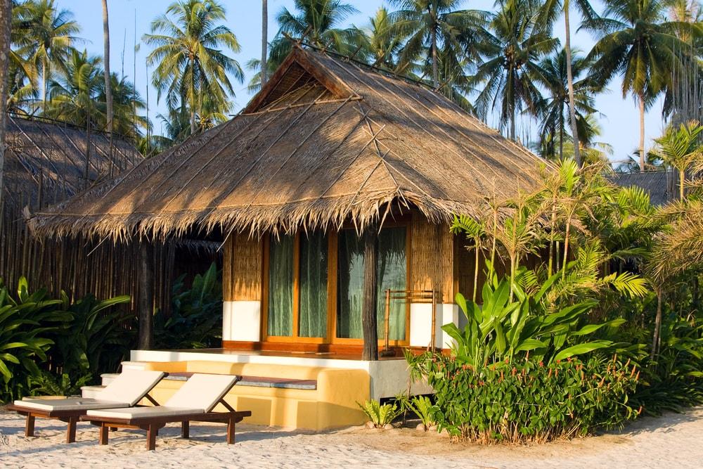 Чем опасен отдых в экзотических странах: ученые доказали риск заражения бактериями в отелях и частном секторе