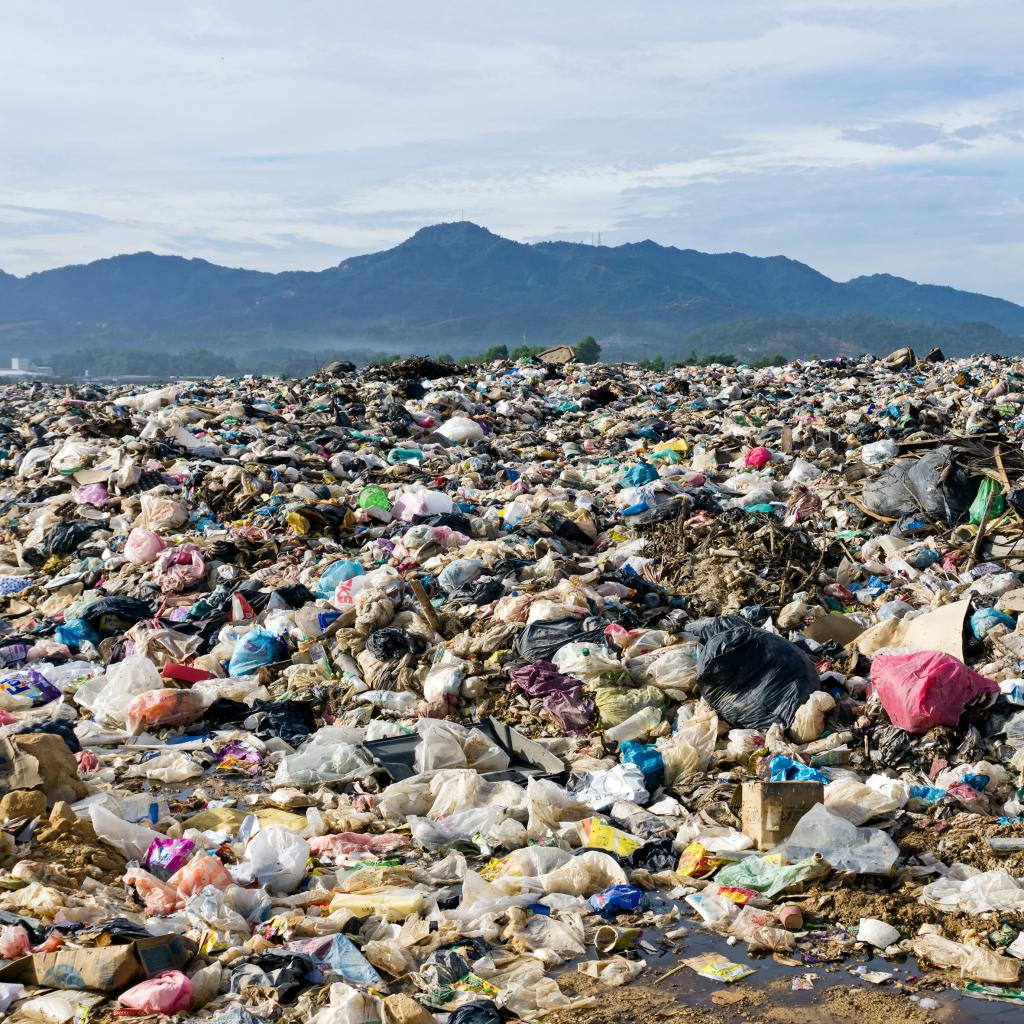 Биопластик может нанести больший урон планете, чем обычный, считают эксперты