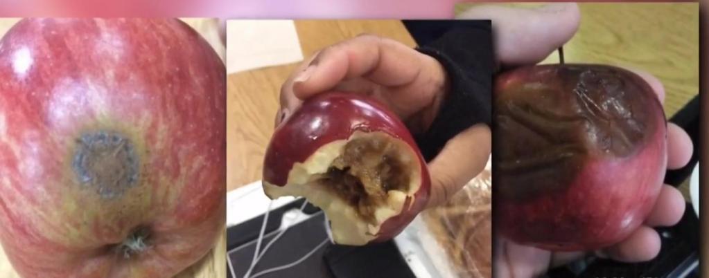Как этим можно кормить детей? Ученики недовольны несвежими обедами, которыми их кормят в школах