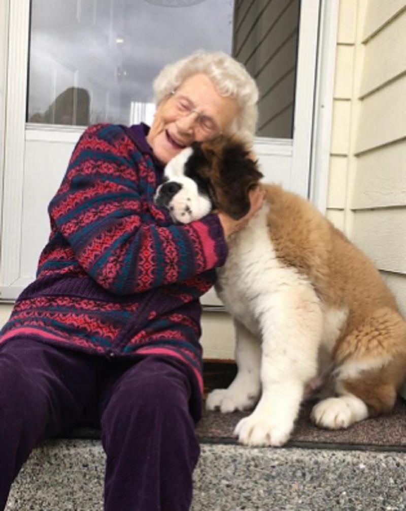 Бабушка после потери мужа чувствовала себя одинокой, пока в ее жизни не появился лохматый великан