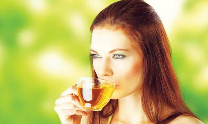 12 удивительных преимуществ чая из крапивы, о которых следует знать