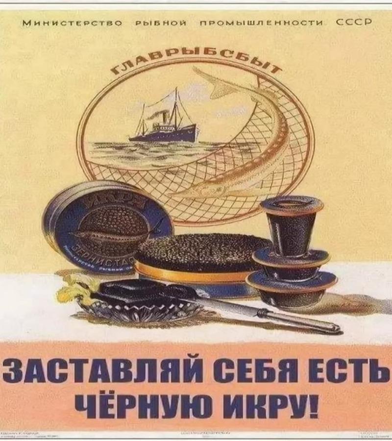Не роскошь, а символ эпохи: черной икрой в СССР лечили детей, удивляли иностранцев и подкрепляли спортсменов