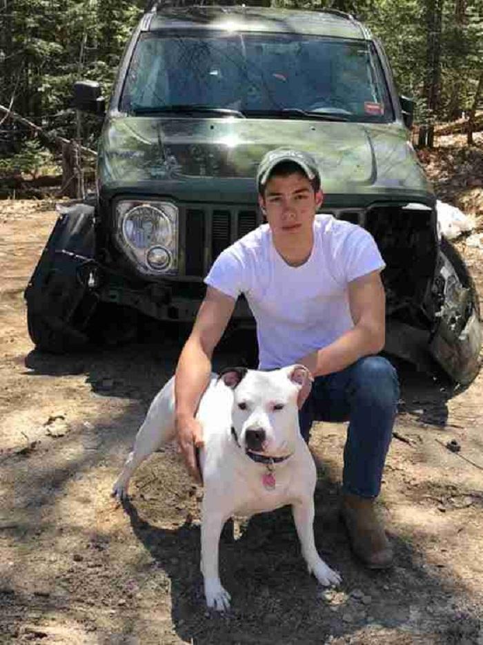 Молодой человек попал в аварию, возвращаясь с рыбалки: хорошо, что его собака была в машине