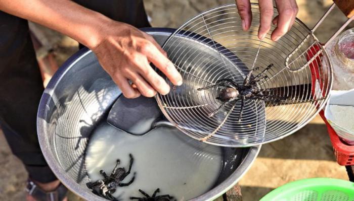 приготовление тарантула