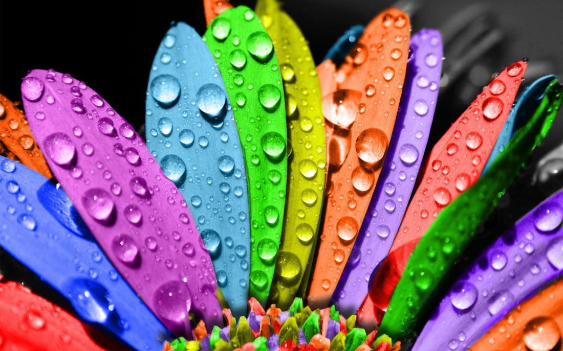 http://fb.ru/media/i/8/5/6/7/0/i/85670.jpg