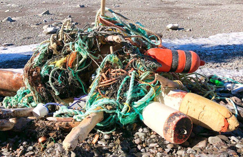 Жительница Канады очищает пляжи от мусора и собрала 2,4 тонны всего за год