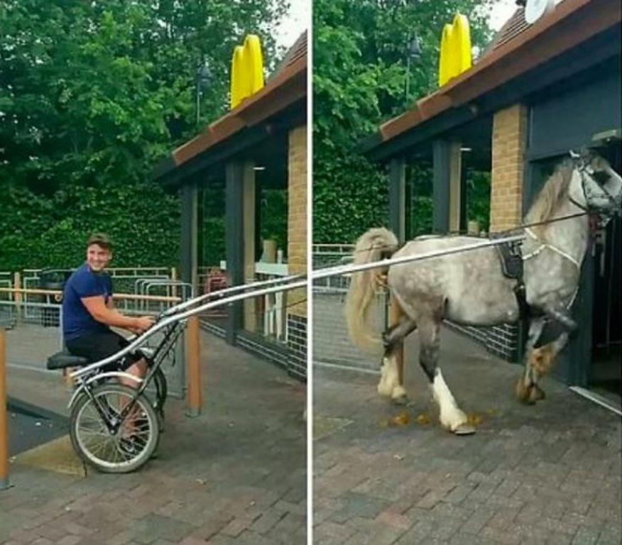 Молодые люди смогли получить бесплатный обед в «Макдоналдсе» после того, как приехали в ресторан на повозках, запряженных лошадьми (видео)
