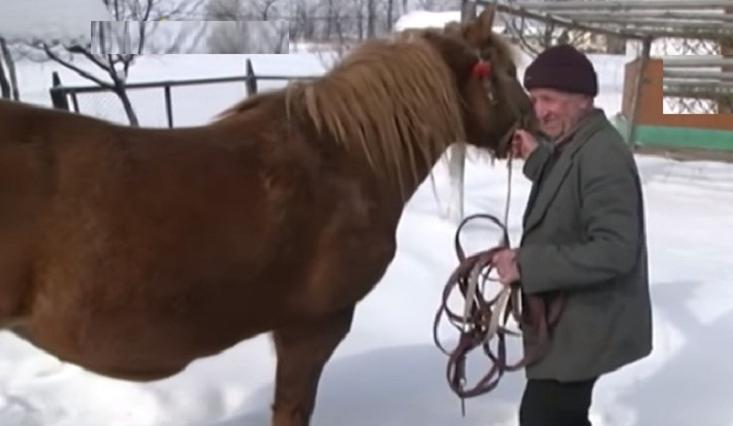 Лошадь ночью бегала по трассе и не давалась патрулю, будто пытаясь им что-то сообщить. Скоро стало понятно, кого она спасала
