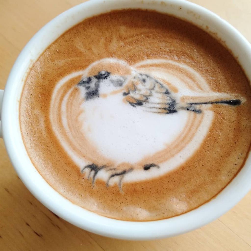 собрали рисунки из пенки кофе фоторобота человека может