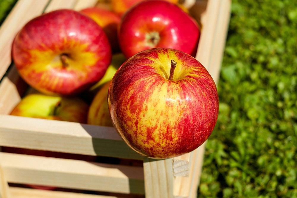 Маленькая хитрость, позволяющая сохранить фрукты свежими дольше
