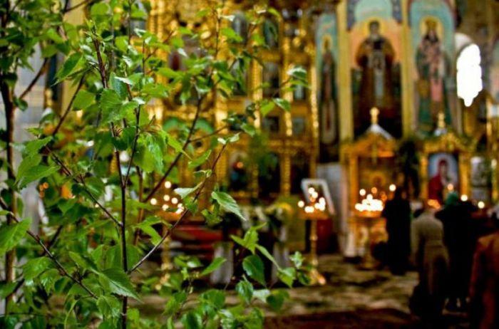 Почему на Троицу принято украшать дом зеленью: какую можно использовать, а какую - нет