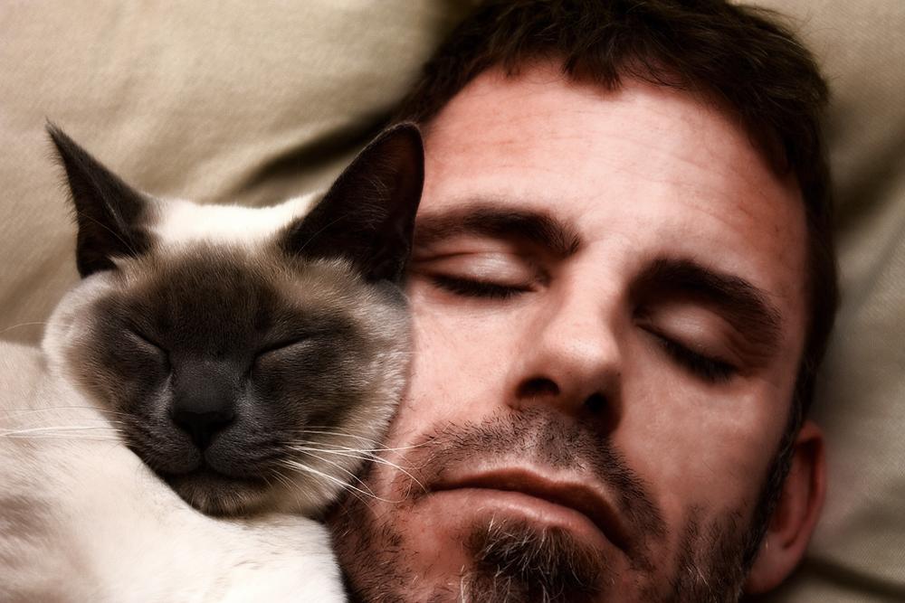 фото человека любящего поспать