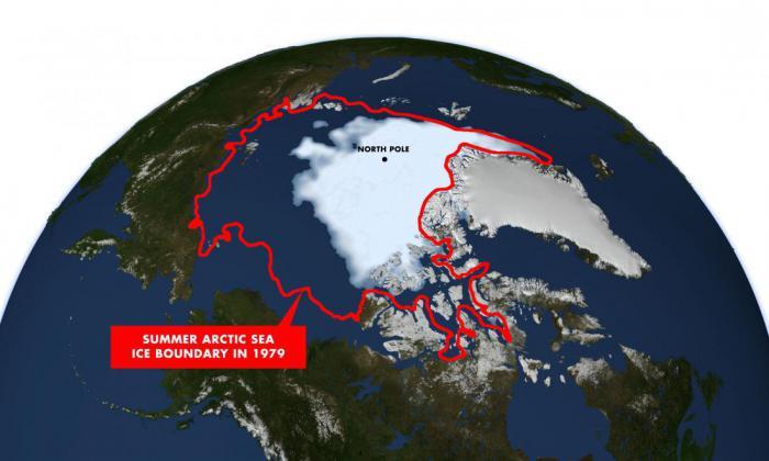 арктический лед