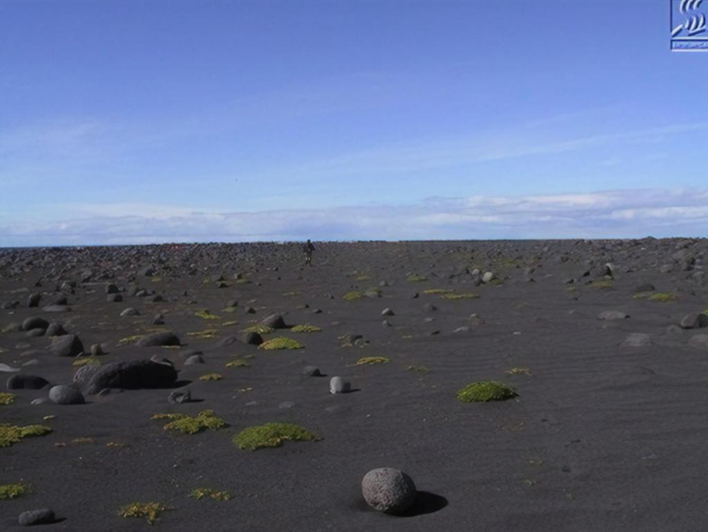Таинственный остров, который закрыт для посещения: как выглядит это место (фото)