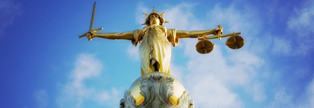 юриспруденция и ВУЗ