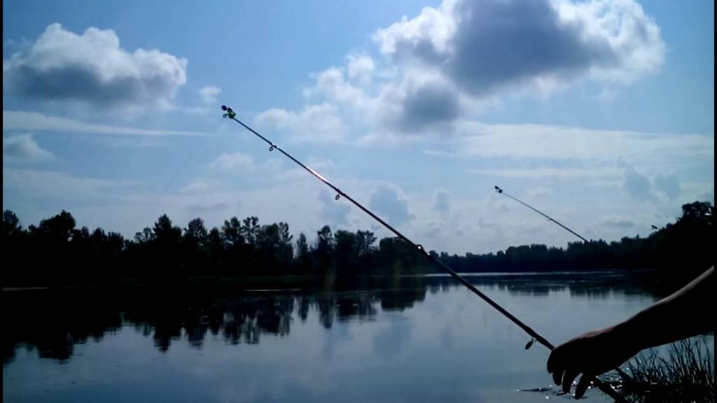 Рыбалка на реке десне