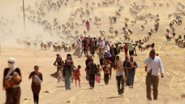 Правовой статус беженцев и вынужденных переселенцев: причины, права, решения и обязанности