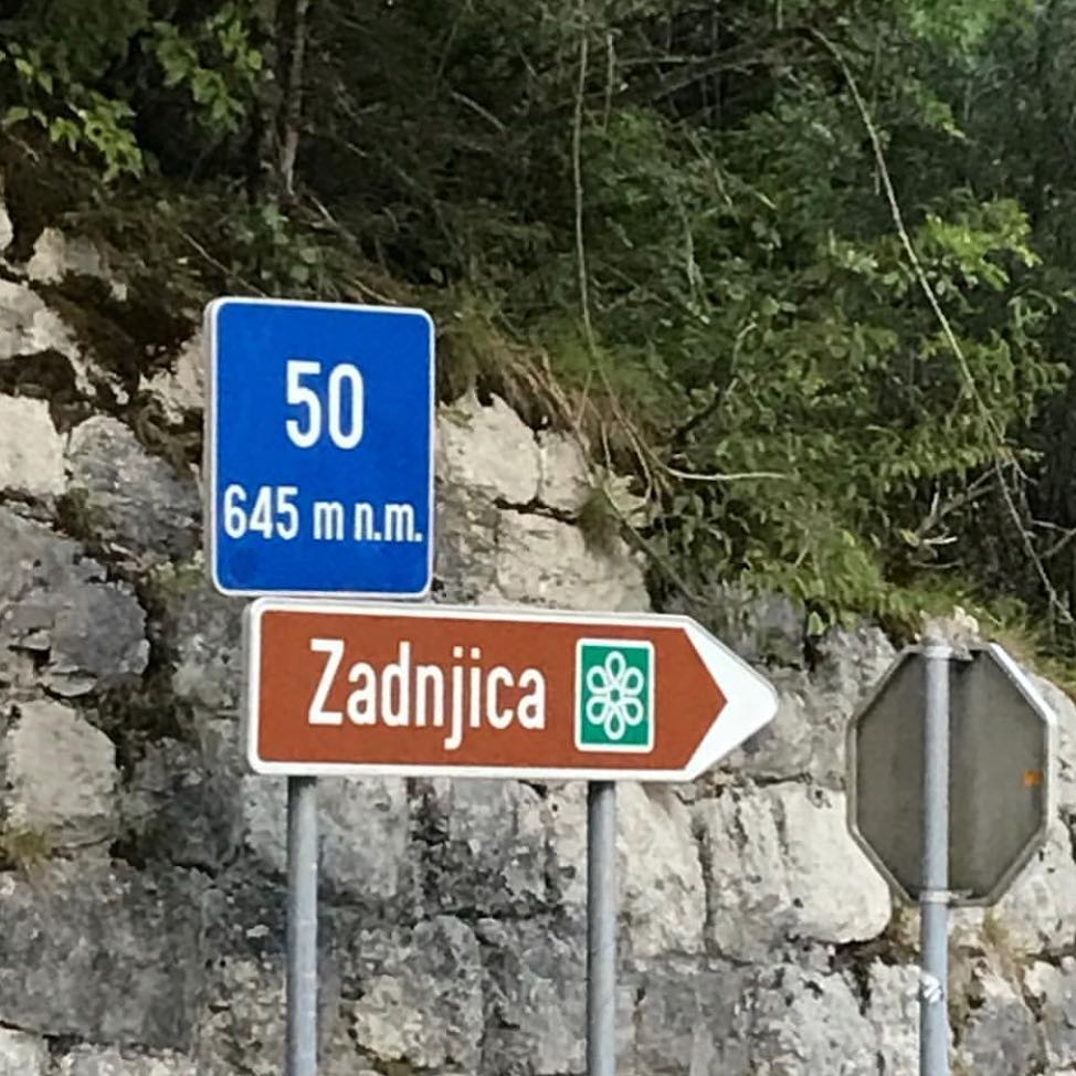 Slovenian language