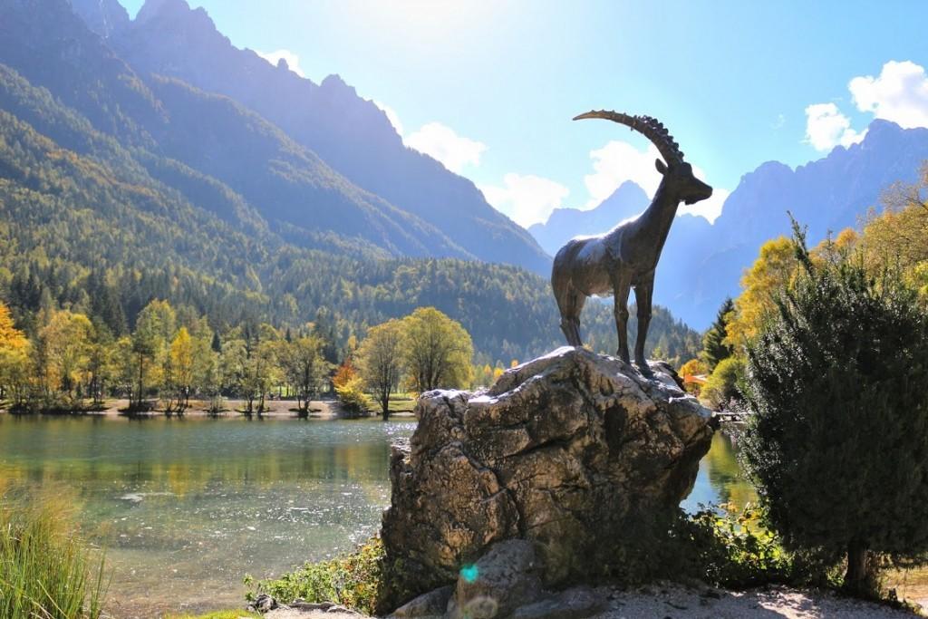 View in Slovenia
