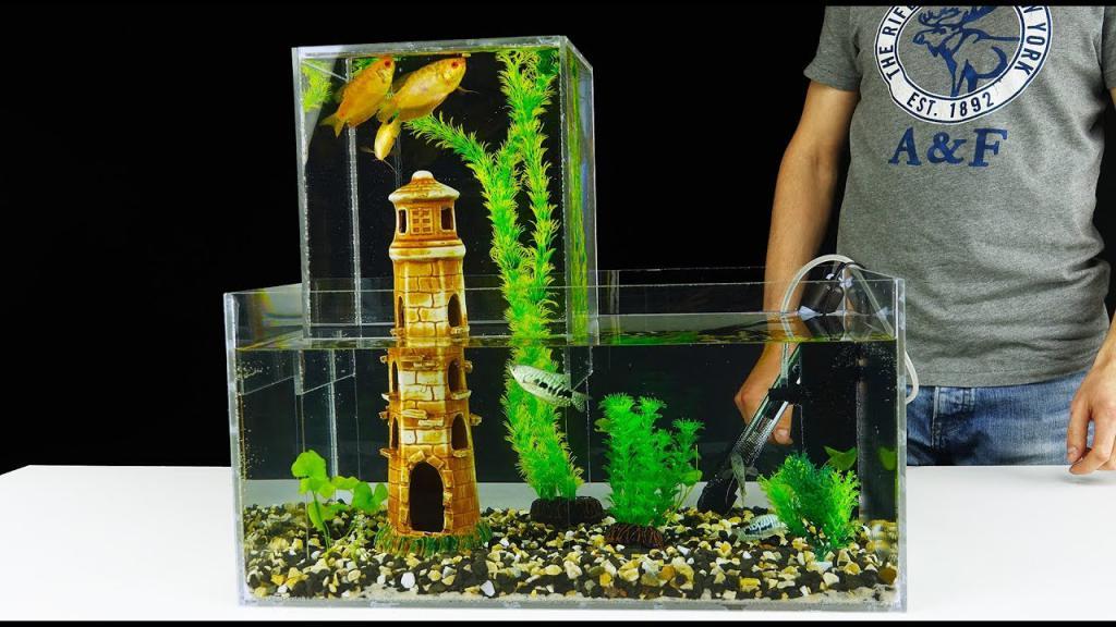 оригинальный аквариум