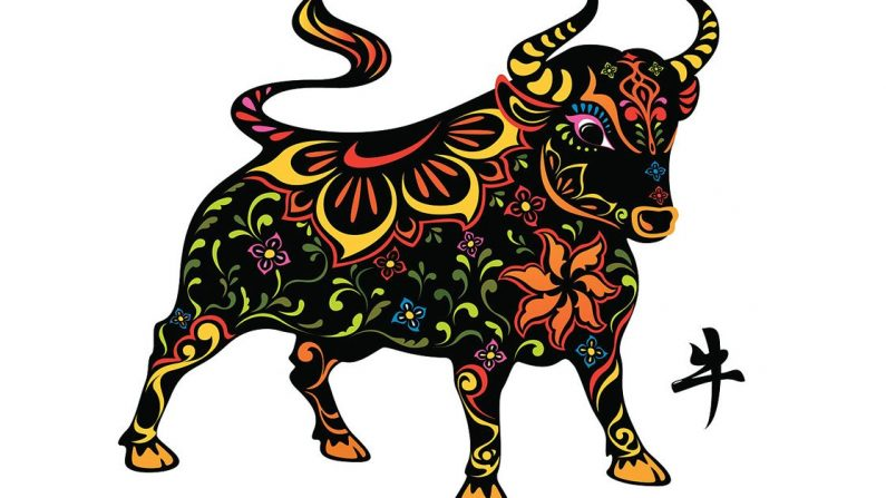 Horoscope bull