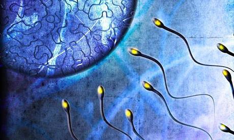 kachestvo-spermi-pri-autoimmunnom-tireoidite