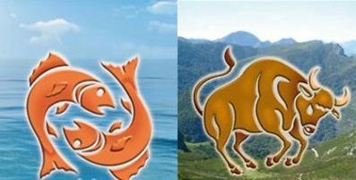 совместимость знаком телец и рыба
