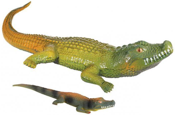 Игрушки растущие в воде динозавры