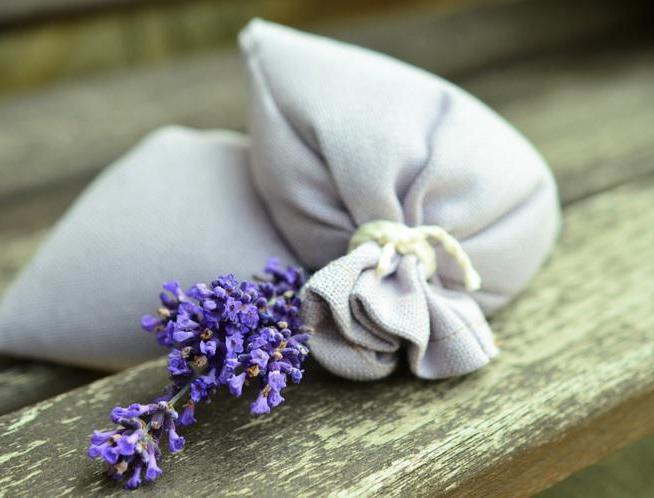 Как сделать в домашних условиях освежитель воздуха без эфирных масел