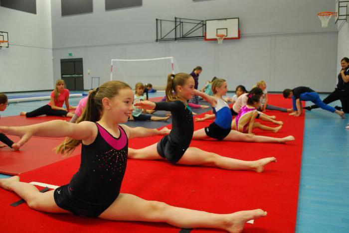 Можно ли стать гимнасткой в 14 лет