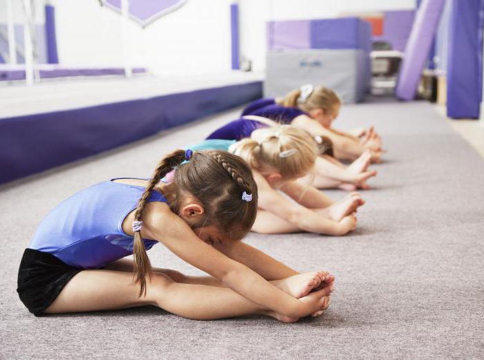Секция спортивной гимнастики в москве